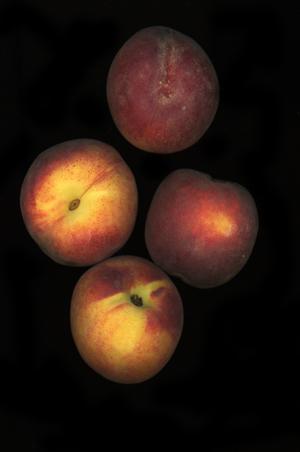 fruitchouli