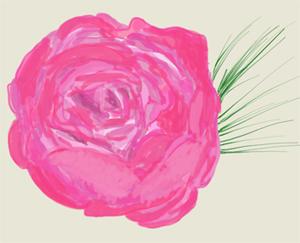 hello 2012, hello roses