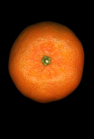 mandarines et al