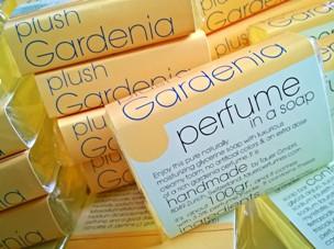 more gardenia